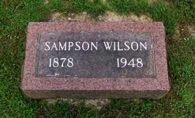 WILSON, SAMPSON - Baxter County, Arkansas | SAMPSON WILSON - Arkansas Gravestone Photos