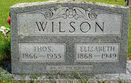 WILSON, THOMAS - Baxter County, Arkansas | THOMAS WILSON - Arkansas Gravestone Photos