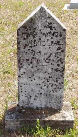 WOODLEY, JAMES SAMUEL - Baxter County, Arkansas | JAMES SAMUEL WOODLEY - Arkansas Gravestone Photos