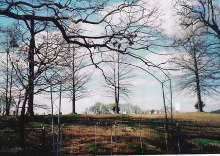 *YELL CEMETERY GATE,  - Benton County, Arkansas    *YELL CEMETERY GATE - Arkansas Gravestone Photos