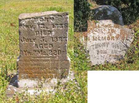 HALL, ANTHONY - Benton County, Arkansas | ANTHONY HALL - Arkansas Gravestone Photos