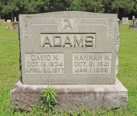 ADAMS, DAVID N - Benton County, Arkansas | DAVID N ADAMS - Arkansas Gravestone Photos