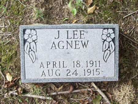 AGNEW, J. LEE - Benton County, Arkansas | J. LEE AGNEW - Arkansas Gravestone Photos