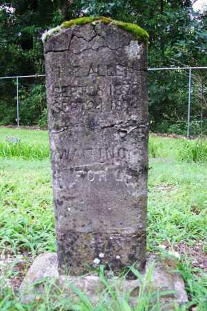 ALLEN, T E - Benton County, Arkansas | T E ALLEN - Arkansas Gravestone Photos