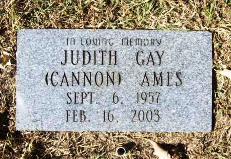 CANNON AMES, JUDITH GAY - Benton County, Arkansas | JUDITH GAY CANNON AMES - Arkansas Gravestone Photos