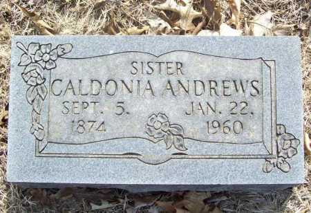 ANDREWS, CALDONIA - Benton County, Arkansas | CALDONIA ANDREWS - Arkansas Gravestone Photos