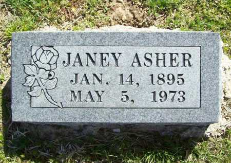 ASHER, JANEY - Benton County, Arkansas | JANEY ASHER - Arkansas Gravestone Photos