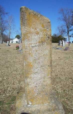 BEAVER, ELIZABETH - Benton County, Arkansas | ELIZABETH BEAVER - Arkansas Gravestone Photos