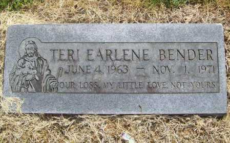 BENDER, TERI EARLENE - Benton County, Arkansas | TERI EARLENE BENDER - Arkansas Gravestone Photos