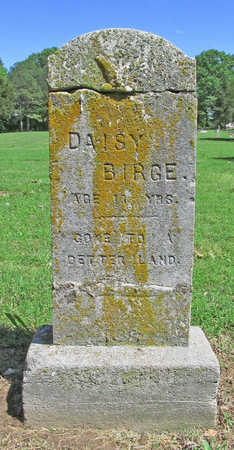 BIRGE, DAISY - Benton County, Arkansas | DAISY BIRGE - Arkansas Gravestone Photos