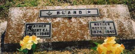BLAND, ALBERT EDGAR L. - Benton County, Arkansas | ALBERT EDGAR L. BLAND - Arkansas Gravestone Photos