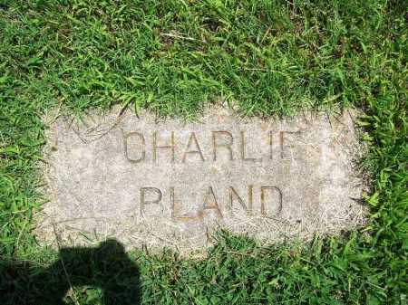 BLAND, CHARLIE - Benton County, Arkansas | CHARLIE BLAND - Arkansas Gravestone Photos