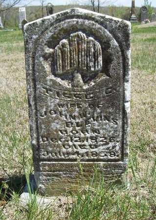 BLEVINS, TISSE C. - Benton County, Arkansas | TISSE C. BLEVINS - Arkansas Gravestone Photos