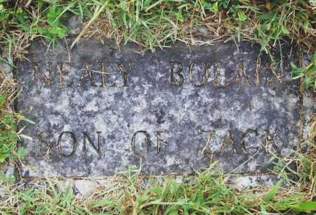BOLAIN, NEALY - Benton County, Arkansas | NEALY BOLAIN - Arkansas Gravestone Photos