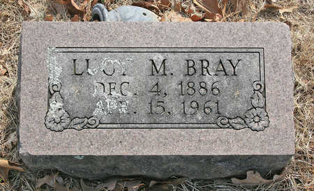 BRAY, LUCY M - Benton County, Arkansas | LUCY M BRAY - Arkansas Gravestone Photos