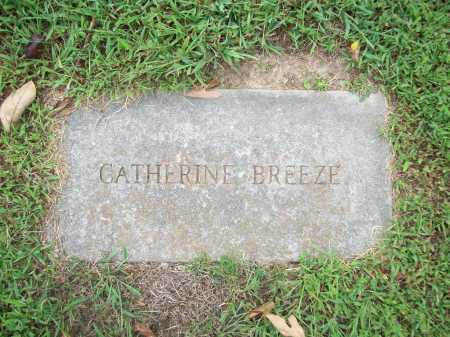 BREEZE, CATHERINE - Benton County, Arkansas | CATHERINE BREEZE - Arkansas Gravestone Photos