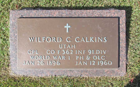 CALKINS (VETERAN WWI), WILFORD C - Benton County, Arkansas | WILFORD C CALKINS (VETERAN WWI) - Arkansas Gravestone Photos