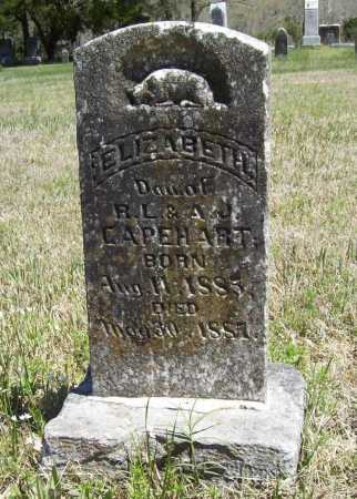 CAPEHART, ELIZABETH - Benton County, Arkansas | ELIZABETH CAPEHART - Arkansas Gravestone Photos