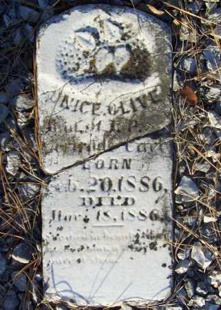 CARL, UNICE OLIVE - Benton County, Arkansas | UNICE OLIVE CARL - Arkansas Gravestone Photos