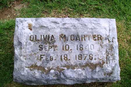 CARTER, OLIVIA M. - Benton County, Arkansas | OLIVIA M. CARTER - Arkansas Gravestone Photos