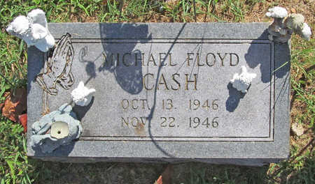 CASH, MICHAEL FLOYD - Benton County, Arkansas | MICHAEL FLOYD CASH - Arkansas Gravestone Photos