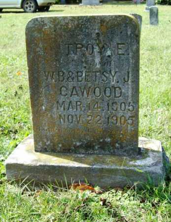 CAWOOD, TROY E. - Benton County, Arkansas | TROY E. CAWOOD - Arkansas Gravestone Photos