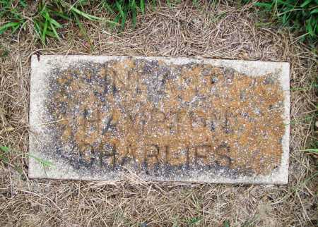 CHARLIES, INFANT - Benton County, Arkansas | INFANT CHARLIES - Arkansas Gravestone Photos