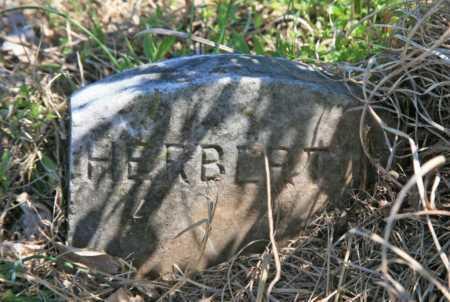 CLARK, HERBERT - Benton County, Arkansas | HERBERT CLARK - Arkansas Gravestone Photos