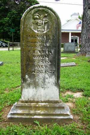 CLARK, MAGNOLIA D. - Benton County, Arkansas   MAGNOLIA D. CLARK - Arkansas Gravestone Photos