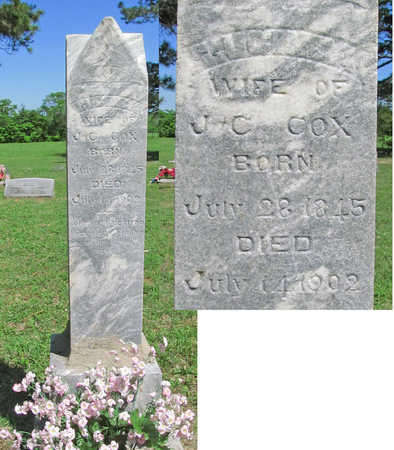 COX, LUCINDA - Benton County, Arkansas | LUCINDA COX - Arkansas Gravestone Photos