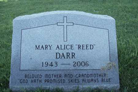 REED DARR, MARY ALICE - Benton County, Arkansas | MARY ALICE REED DARR - Arkansas Gravestone Photos