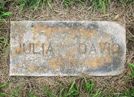 DAVID, JULIA - Benton County, Arkansas | JULIA DAVID - Arkansas Gravestone Photos