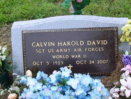 DAVID (VETERAN WWII), CALVIN HAROLD - Benton County, Arkansas | CALVIN HAROLD DAVID (VETERAN WWII) - Arkansas Gravestone Photos