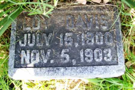 DAVIS, LOY - Benton County, Arkansas | LOY DAVIS - Arkansas Gravestone Photos