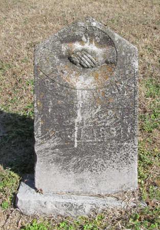 DAWSON, SOLLY - Benton County, Arkansas | SOLLY DAWSON - Arkansas Gravestone Photos