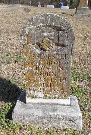 DAWSON, SYLVESTER - Benton County, Arkansas | SYLVESTER DAWSON - Arkansas Gravestone Photos