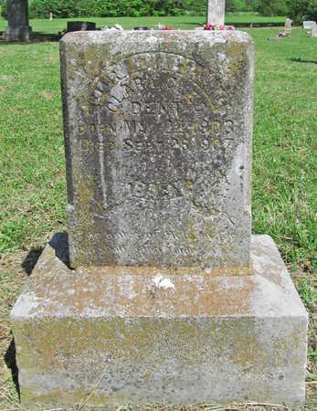 DENT, CLARA CLEO - Benton County, Arkansas | CLARA CLEO DENT - Arkansas Gravestone Photos