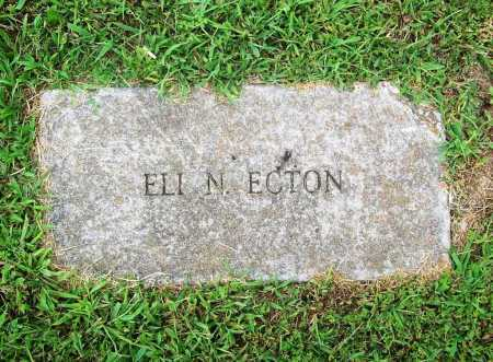 ECTON, ELI N. - Benton County, Arkansas | ELI N. ECTON - Arkansas Gravestone Photos
