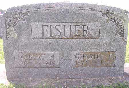 FISHER, ALBERT N. - Benton County, Arkansas | ALBERT N. FISHER - Arkansas Gravestone Photos