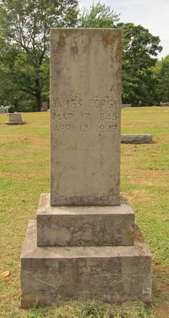 FORGY, JAMES - Benton County, Arkansas | JAMES FORGY - Arkansas Gravestone Photos