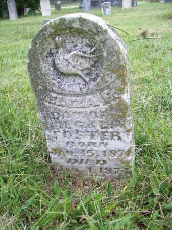FOSTER, ELIZA E. - Benton County, Arkansas | ELIZA E. FOSTER - Arkansas Gravestone Photos