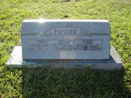 FOSTER, NANNIE CALLIS - Benton County, Arkansas | NANNIE CALLIS FOSTER - Arkansas Gravestone Photos