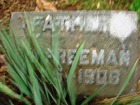 FREEMAN, GEORGE W - Benton County, Arkansas | GEORGE W FREEMAN - Arkansas Gravestone Photos