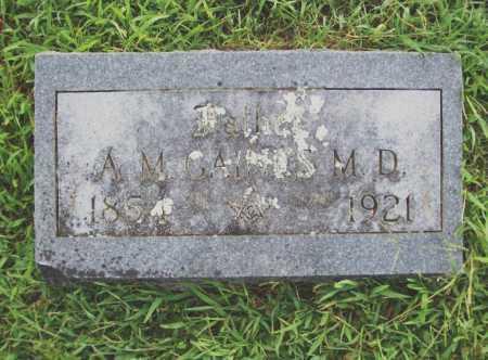GAINES, ADELBERT M., M. D. - Benton County, Arkansas | ADELBERT M., M. D. GAINES - Arkansas Gravestone Photos