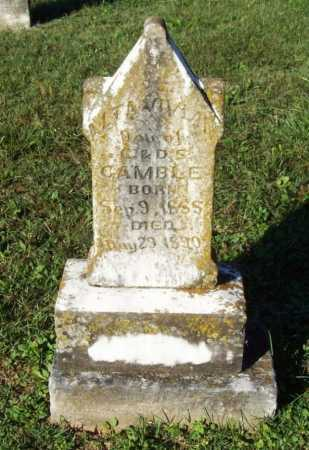 GAMBLE, ALTA VIVIA - Benton County, Arkansas | ALTA VIVIA GAMBLE - Arkansas Gravestone Photos