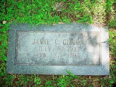 GIBSON, JAMIE C. - Benton County, Arkansas | JAMIE C. GIBSON - Arkansas Gravestone Photos