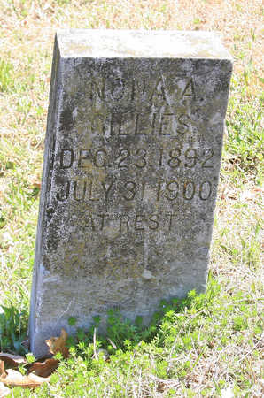 GILLIES, NONA A - Benton County, Arkansas | NONA A GILLIES - Arkansas Gravestone Photos