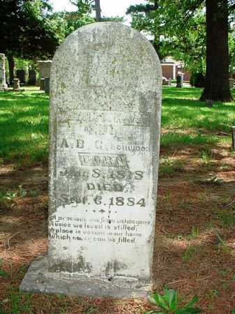 GREENWOOD, SARAH A. - Benton County, Arkansas | SARAH A. GREENWOOD - Arkansas Gravestone Photos