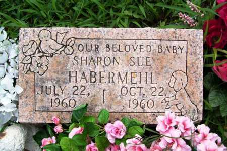 HABERMEHL, SHARON SUE - Benton County, Arkansas | SHARON SUE HABERMEHL - Arkansas Gravestone Photos