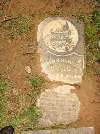 HAMILTON, ALFRED H. - Benton County, Arkansas | ALFRED H. HAMILTON - Arkansas Gravestone Photos